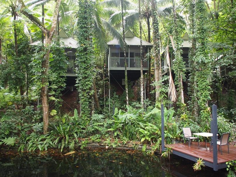 Daintree Rainforest Eco Lodge