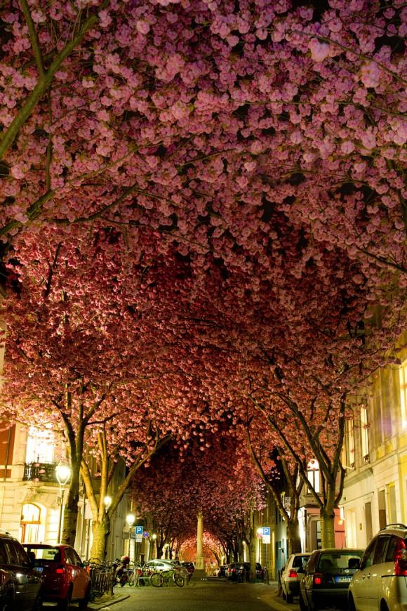 Ulica w Bonn - Niemcy