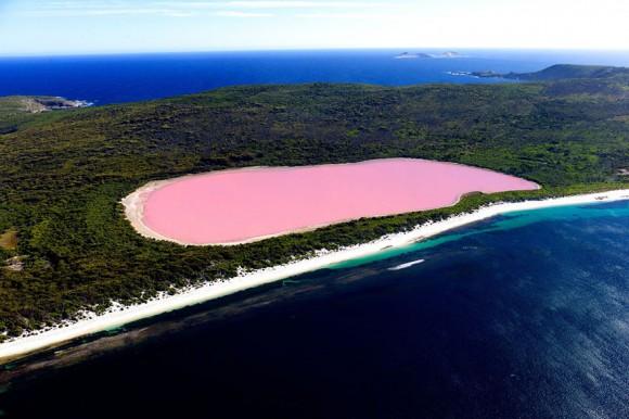 Różowe jezioro Hillier - Australia