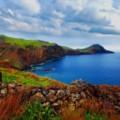 Madera – wyspa wiecznej wiosny